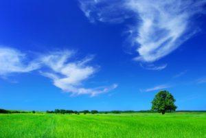 Clean-Air